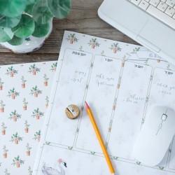 לוח תכנון שבועי יצירתי